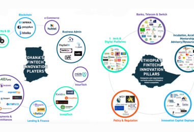 Ethiopia, Ghana and Rwanda Among Africa's Fastest-Growing Fintech Ecosystems: Report